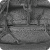Zymoseptoria tritici picture